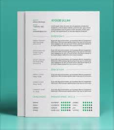 word document sle resume modele cv sur indesign document
