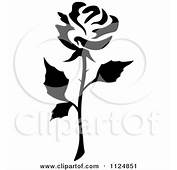 Black And White Rose Flower 13 Posters Art Prints By