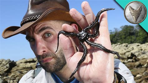 coyote peterson coyote peterson family pictures age real