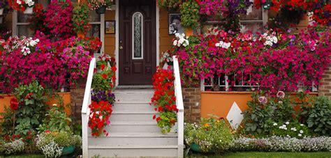 popular flowers  gardeners top  bombay outdoors