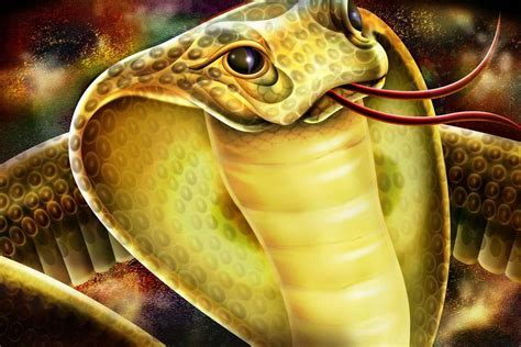 Snake Wallpapers   Desktop Wallpapers