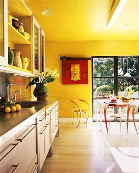 dazzling interior design  decorating ideas modern