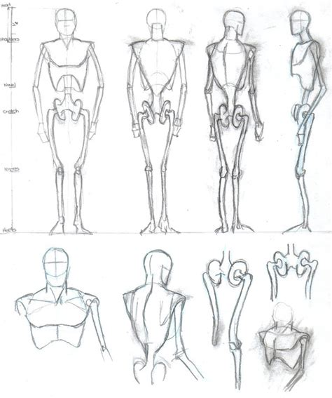 human body sketch by mmawolf male models picture