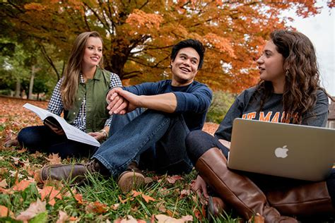 Https Www Utm Edu Departments Mba Mba Admission Criteria Php by The Of Tennessee At Martin Http Www Utm Edu