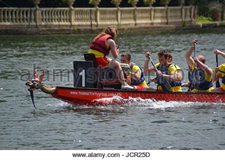 dragon boat festival kingston dragon boat racing on the thames at kingston uk stock