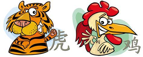 tiger and rooster compatibility