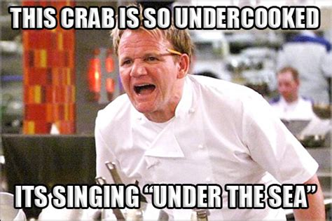 Hells Kitchen Meme - feeling meme ish gordon ramsay food galleries paste