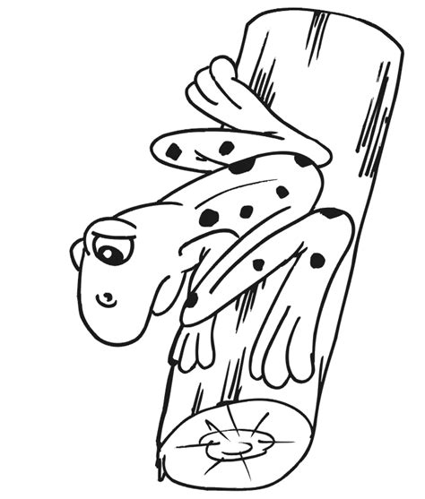 coloring page frog on a log frog coloring page frog on a log