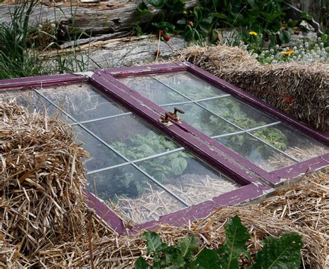 Cold Frame Gardening by Cold Frames Better Best Gardening