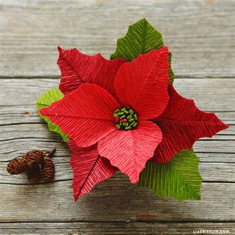 How To Make Paper Poinsettia Flowers - 17 best images about cactuses trees leaves on