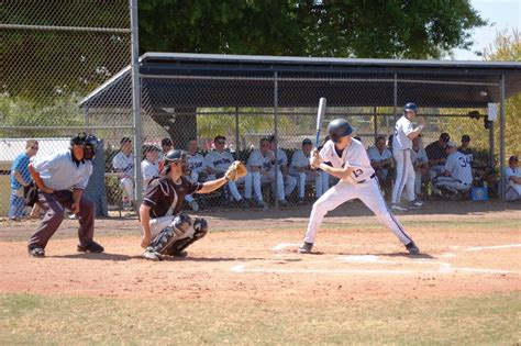 Mba Baseball Colorado by Penn State Altoona Admissions Sat Scores Costs More