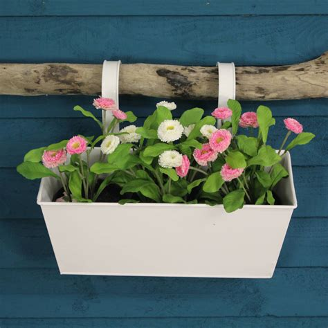 Balcony Herb Planter by Zinc Metal Balcony Flower And Herb Planter In White By