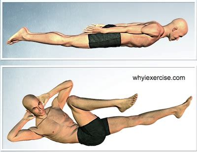 strengthening exercises illustrated  unique lifelike