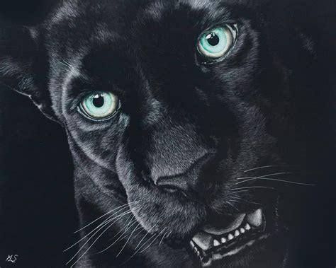 black jaguar hd wallpaper black jaguar wallpapers hd download