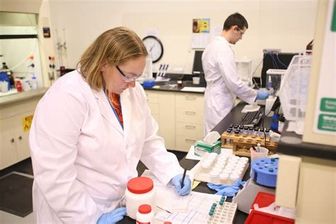 analytical chemistry jobs a branch of a chemistry career
