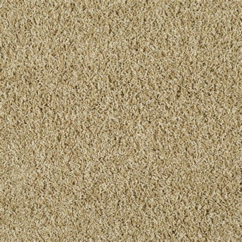 shop stainmaster active family near and dear calico beige textured indoor carpet at lowes