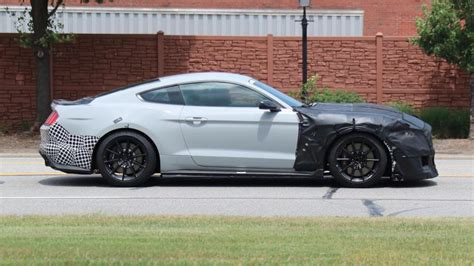 Shelby Gt500 Snake Specs by 2019 Shelby Gt500 Price Horsepower Release Date Specs