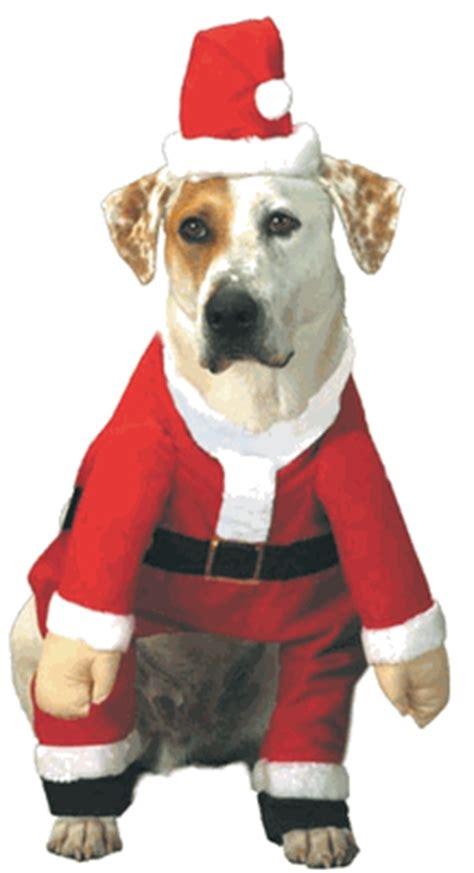 santa claus costume for sale santa claus costumes for sale 28 images buy wholesale