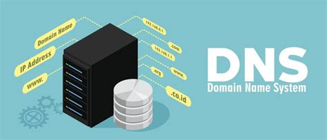 dns definition  domain  system