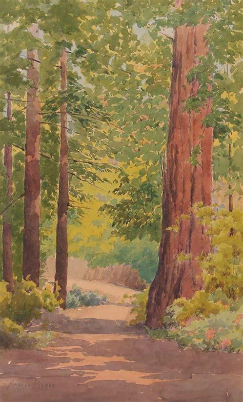 minerva pierce watercolor  ca redwood trees california