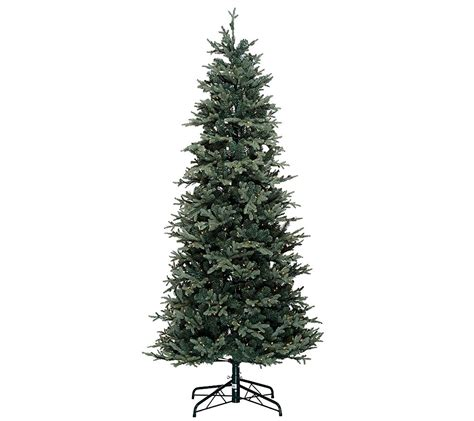 qvc bethlehem lights christmas trees bethlehem lights 7 5 slim blue spruce christmas tree