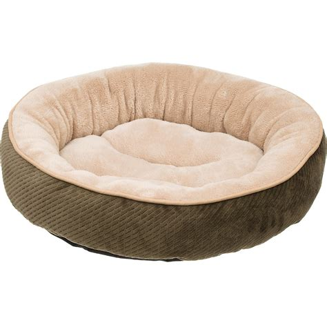 petco cat beds petco textured round cat bed in fern petco