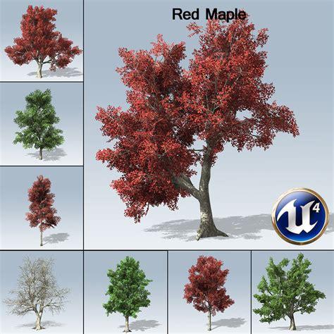 maple tree environment maple ue4 speedtree store