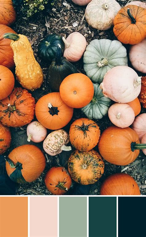 pumpkin colors best 25 fall color palette ideas on fall