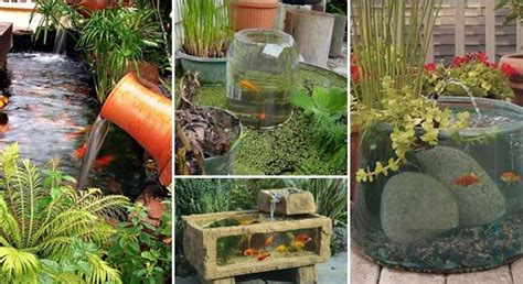 cool backyard projects cool garden or backyard aquarium ideas will blow your mind