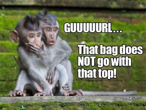 Funny Monkey Memes - funny monkeys dump a day