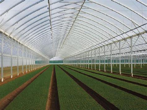 serre horticole en verre d occasion serres tous les fournisseurs serre horticole serre