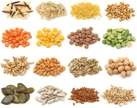 whole grains pic whole grains 02 hd picture free stock photos in image