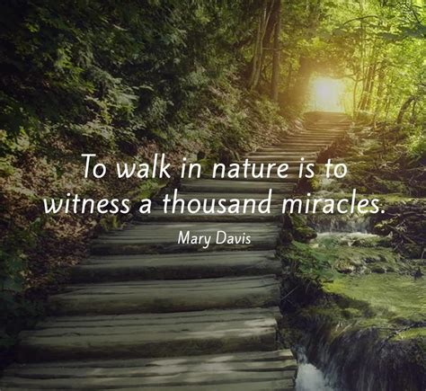 quotes about nature 55 most beautiful quotes about nature and