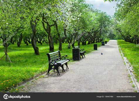panchine parco parco cittadino con sentiero panchine e fioritura della