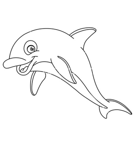 dolphin outline clipart best best dolphin outline 9716 clipartion com