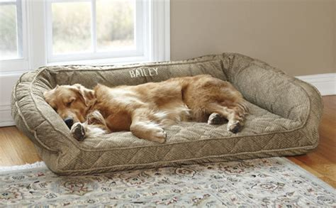dog bedding dog beds deep dish dog bed with memory foam orvis