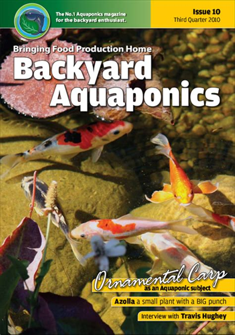backyard aquaponics emagazine edition 10 backyard