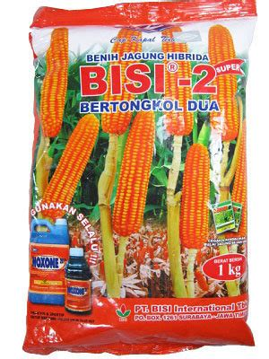 Bibit Jagung Manis Secada F1 jual benih jagung sms wa 0857 7228 0300 dadimakmur