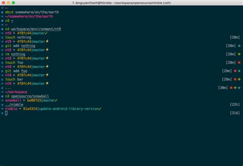Themes Zsh   github lenguyenthanh nt9 oh my zsh theme a clean