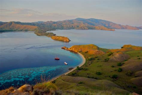reports  blast fishing  komodo stories  coral