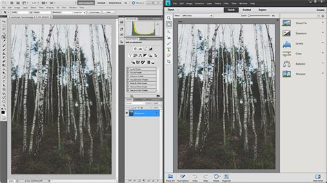 difference between student and full version of lightroom photoshop vs photoshop elements