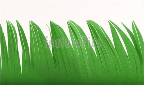 Paper Grass - plants grass made of paper stock image i3482010 at