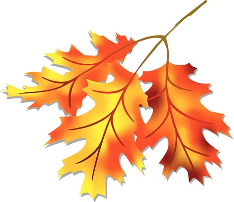 printable fall leaves clip art fall leaves fall leaf clipart free clipart images