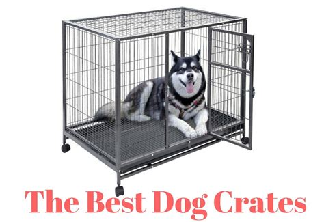best crates for puppies crates kuranda bed xxlarge in midwest crate wood crates kong