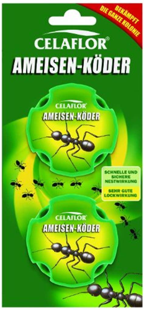 Gegen Ameisen Im Rasen 3020 by Ameisen Im Rasen Oder Garten Entdeckt Ameisen Im Rasen