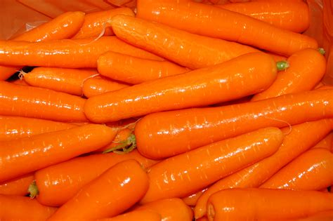 pictures of carrots carrots in western australia agriculture and food