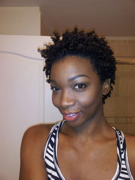 afro twistout pics the best twistout i ve ever had thisthatbeauty