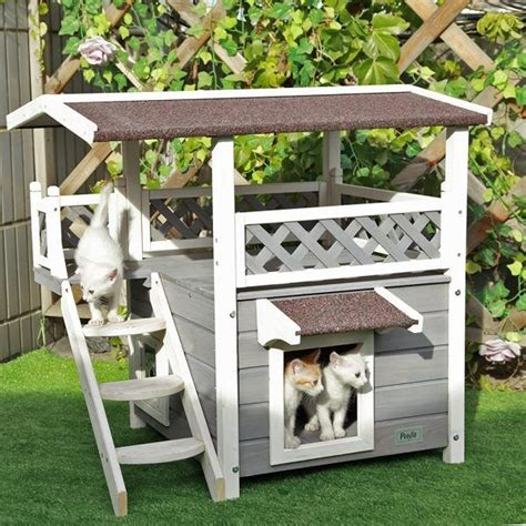 backyard cat best 25 outdoor cat houses ideas on pinterest outdoor