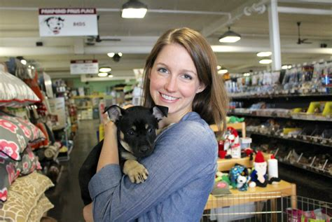 Pets Pantry York by Puppy Parade At Pet Pantry In Greenwich Rescue Puppies For Adoption Greenwich Free Press