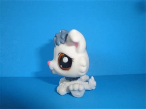 lps husky puppy littlest pet shop cutest pet white grey baby husky puppy 2439 lps new ebay